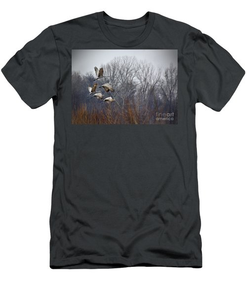 Sandhill Cranes Takeoff Men's T-Shirt (Athletic Fit)