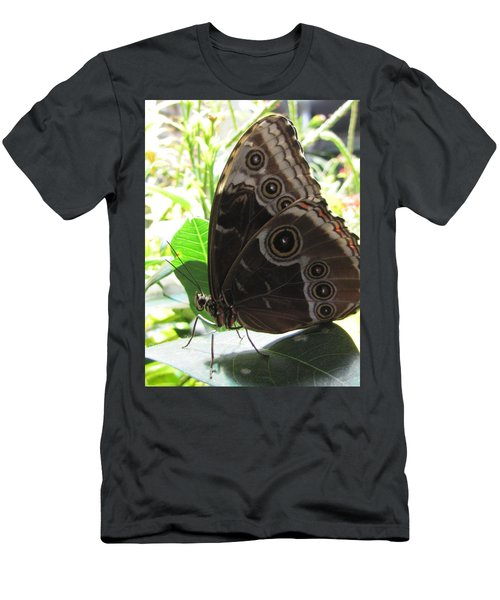 Scarce Morpho Men's T-Shirt (Slim Fit) by Jennifer Wheatley Wolf