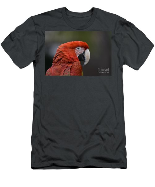 Men's T-Shirt (Slim Fit) featuring the photograph Scarlet Macaw by David Millenheft