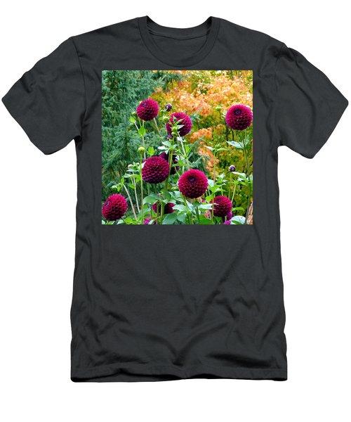 Scenic Minnesota 9 Men's T-Shirt (Athletic Fit)