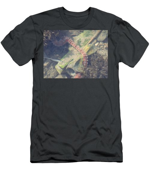 Sea Worm Men's T-Shirt (Athletic Fit)