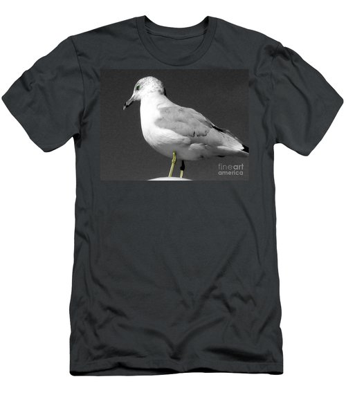 Men's T-Shirt (Slim Fit) featuring the photograph Seagull In Black And White by Nina Silver