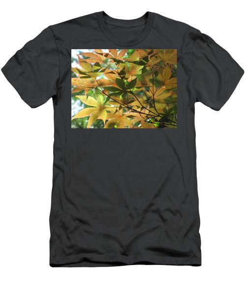 Shadows Of Maple  Men's T-Shirt (Athletic Fit)