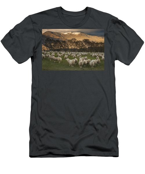 Men's T-Shirt (Athletic Fit) featuring the photograph Sheep Flock At Dawn Arrowtown Otago New by Colin Monteath, Hedgehog House