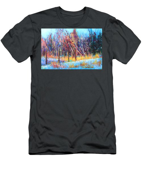 Signs Of Spring - Trees And Snow Kissed By Spring Light Men's T-Shirt (Athletic Fit)