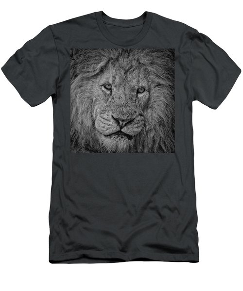 Silver Lion Men's T-Shirt (Athletic Fit)
