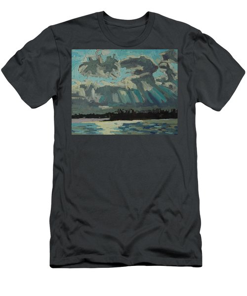 Singleton Cold Front Men's T-Shirt (Slim Fit) by Phil Chadwick