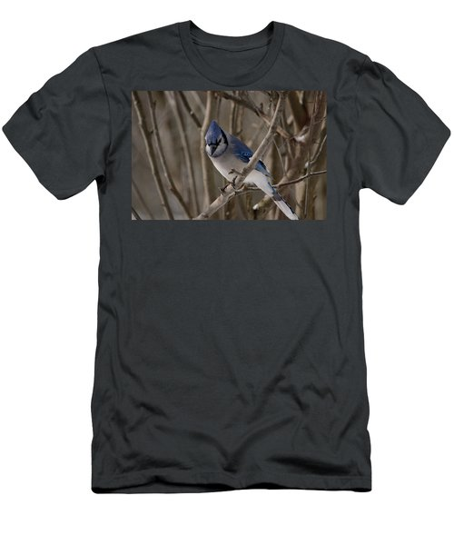 Men's T-Shirt (Slim Fit) featuring the photograph Sitting Pretty by David Porteus