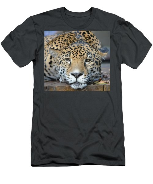 Sleepy Jaguar Men's T-Shirt (Slim Fit) by Richard Bryce and Family