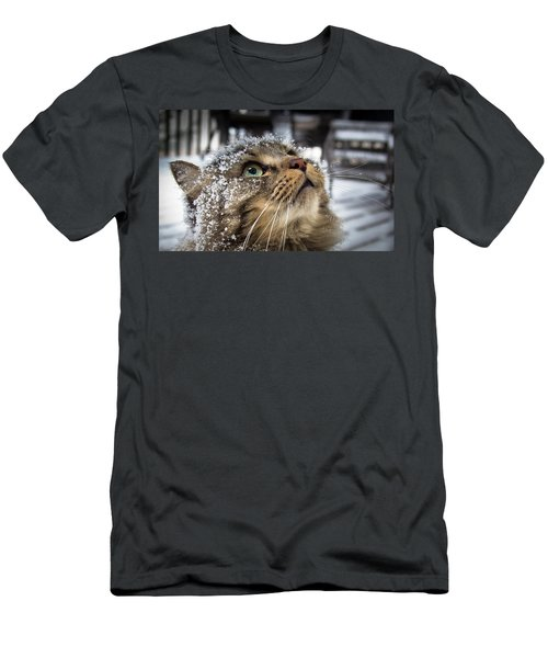 Snow Cat Men's T-Shirt (Athletic Fit)