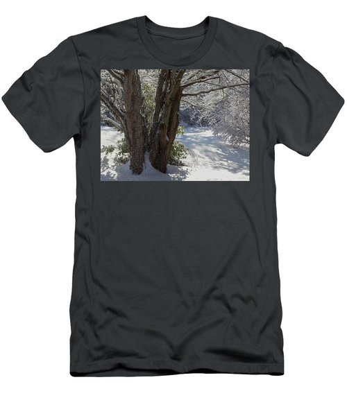 Snow Sparkles Men's T-Shirt (Athletic Fit)