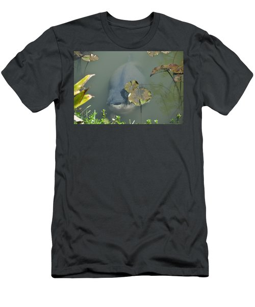 #south American Pacu Men's T-Shirt (Athletic Fit)