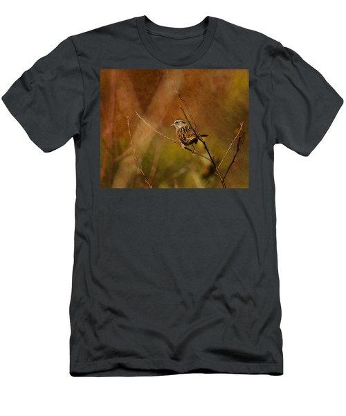 Sparrow In The Bush Men's T-Shirt (Athletic Fit)