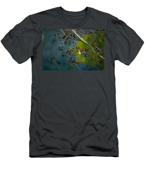 Sparrow In The Warm Light Men's T-Shirt (Slim Fit) by Shelby  Young