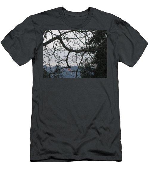 Spider Tree Men's T-Shirt (Slim Fit) by David Trotter