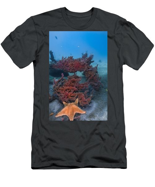 Sponges And A Star Men's T-Shirt (Athletic Fit)