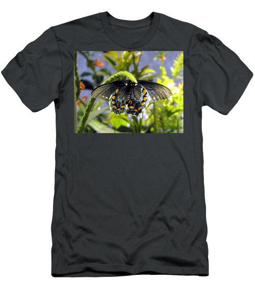 Spotted Beauty Men's T-Shirt (Athletic Fit)