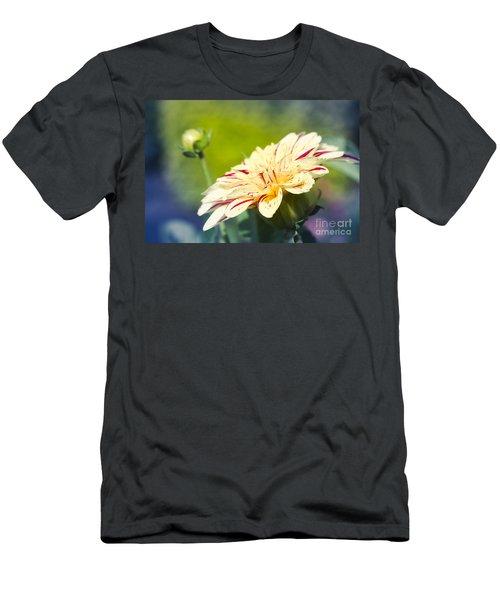 Spring Dream Jewel Tones Men's T-Shirt (Athletic Fit)