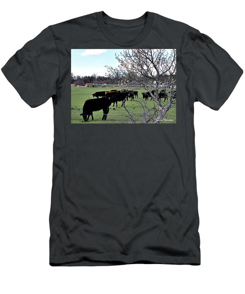 Spring In The Hay Meadow Men's T-Shirt (Athletic Fit)