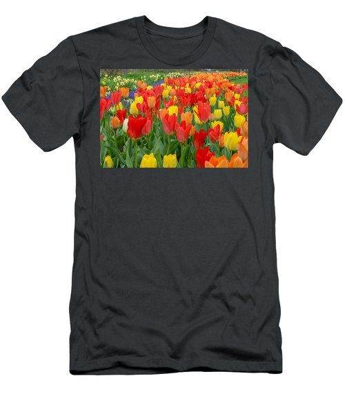 Spring Of Glory Men's T-Shirt (Athletic Fit)
