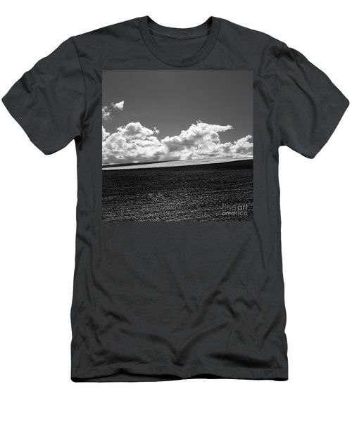 Sprouting Field Of Sunflowers And Field Of Rape At Back. Auvergne. France Men's T-Shirt (Athletic Fit)