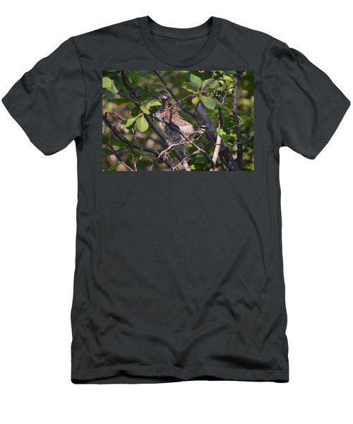 Men's T-Shirt (Slim Fit) featuring the photograph Spruce Grouse2 by James Petersen