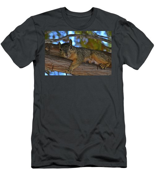 Squirrel On Watch Men's T-Shirt (Athletic Fit)