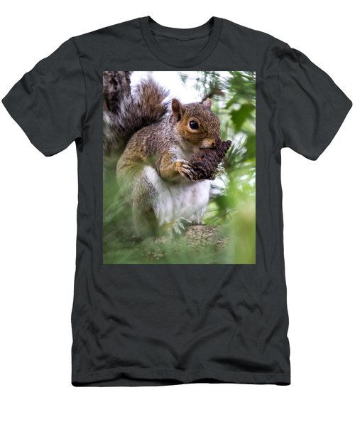 Squirrel With Pine Cone Men's T-Shirt (Athletic Fit)