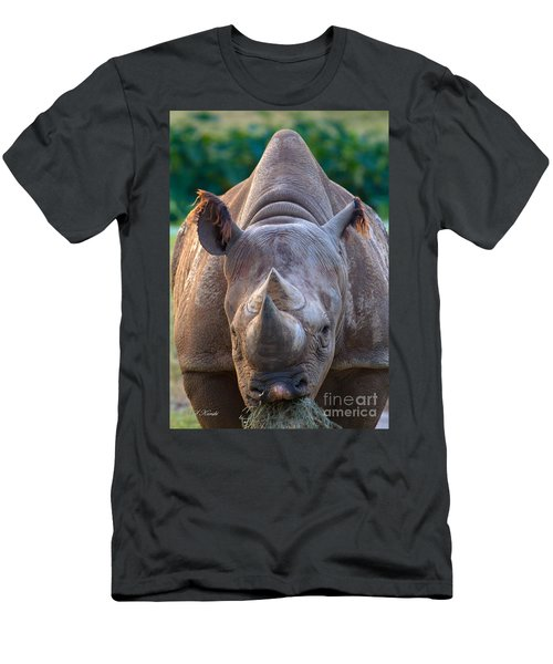 Staring Down Rhino Men's T-Shirt (Athletic Fit)