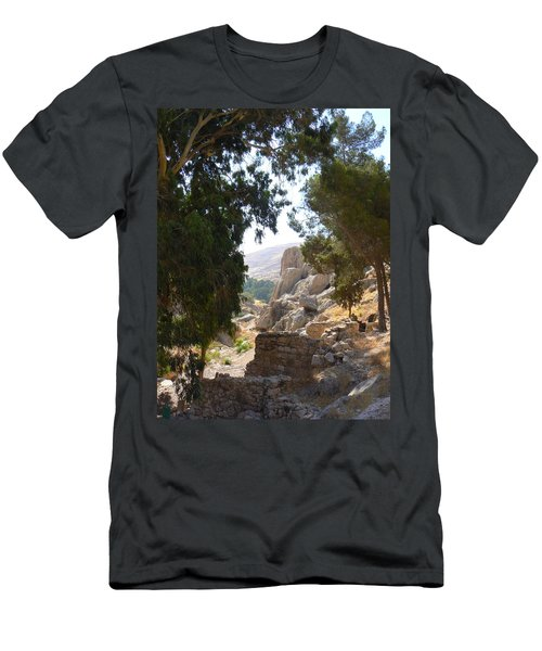 Stony Paths Men's T-Shirt (Athletic Fit)