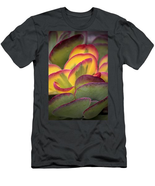 Succulent Light Men's T-Shirt (Athletic Fit)