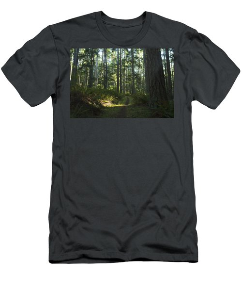 Summer Pacific Northwest Forest Men's T-Shirt (Athletic Fit)