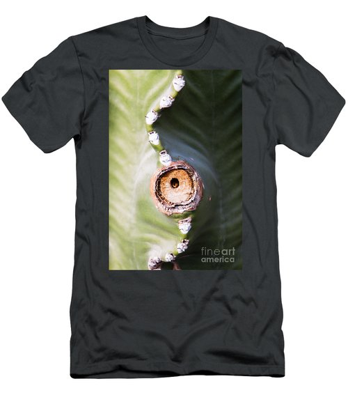 Men's T-Shirt (Athletic Fit) featuring the photograph Sunlight Split On Cactus Knot by John Wadleigh