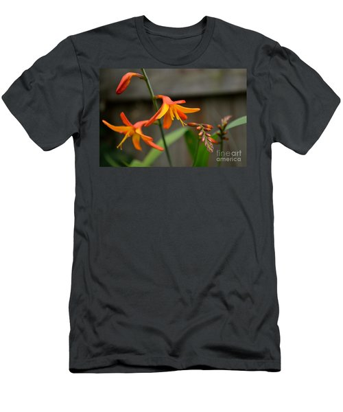 Sunny Crocosmia Men's T-Shirt (Athletic Fit)