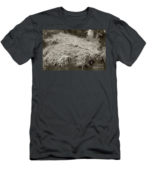 Sunny Gator Sepia  Men's T-Shirt (Athletic Fit)
