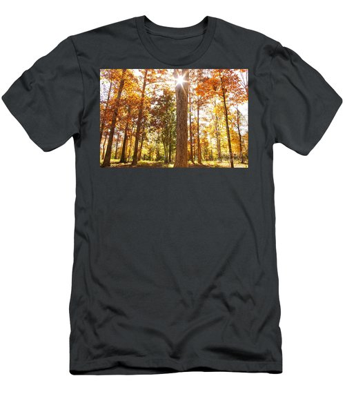 Sunny Hardwoods Men's T-Shirt (Athletic Fit)