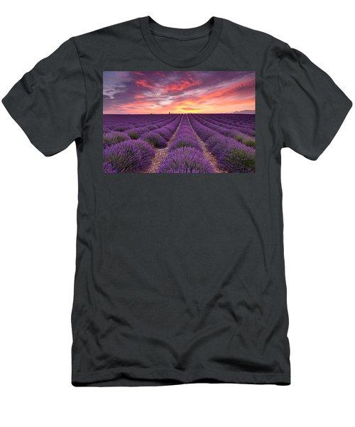 Sunrise Over Lavender Men's T-Shirt (Athletic Fit)
