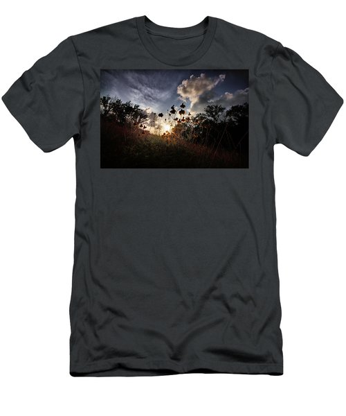Sunset On Daisy Men's T-Shirt (Slim Fit) by Linda Unger