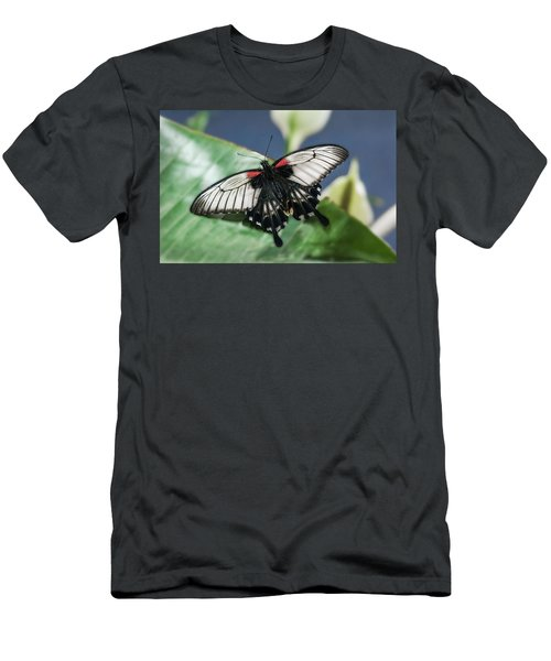 Men's T-Shirt (Athletic Fit) featuring the digital art Swallowtail Butterfly by Mae Wertz