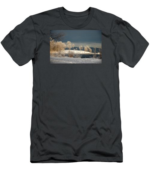 Swans On A Frosty Day Men's T-Shirt (Athletic Fit)