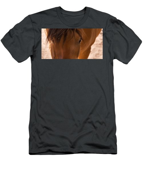 Sweet Horse Face Men's T-Shirt (Athletic Fit)