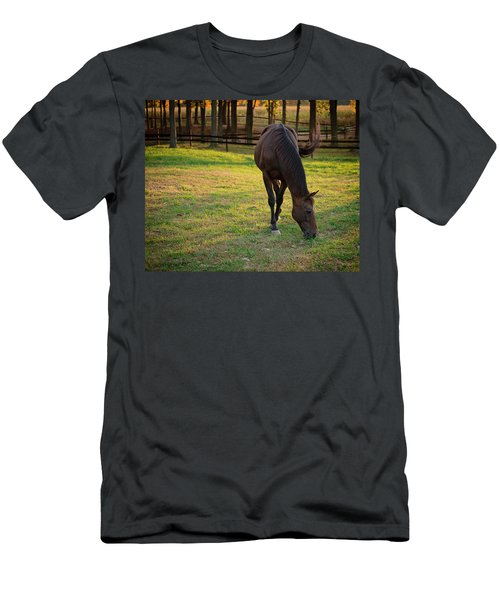 Tender Spring Grass Men's T-Shirt (Athletic Fit)