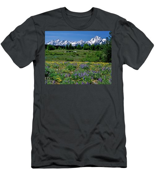 Teton Grandeur Men's T-Shirt (Athletic Fit)