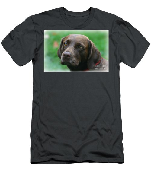 The Chocolate Lab Men's T-Shirt (Athletic Fit)