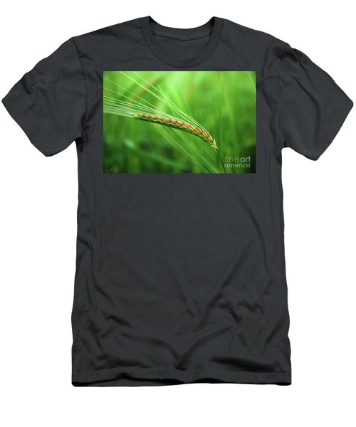 The Corn Men's T-Shirt (Athletic Fit)