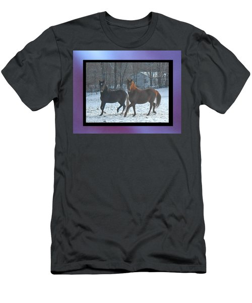 The Dancing Paso Fino Stallions Men's T-Shirt (Athletic Fit)