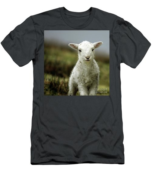 The Lamb Men's T-Shirt (Athletic Fit)