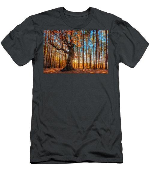 The Lord Of The Trees Men's T-Shirt (Athletic Fit)