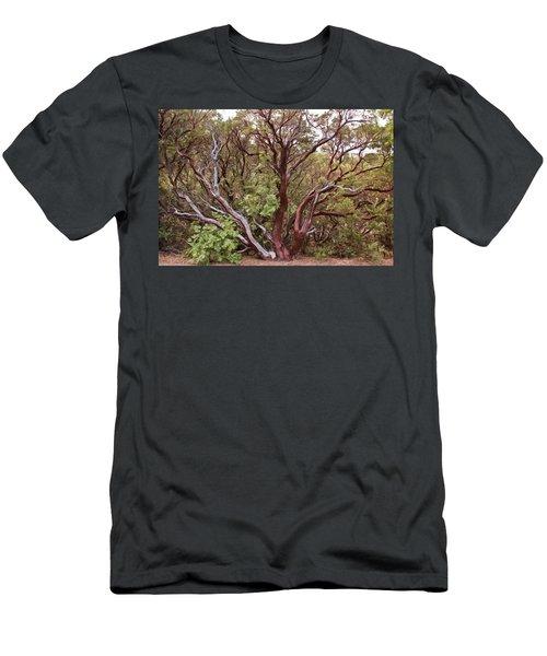 The Manzanita Tree Men's T-Shirt (Athletic Fit)