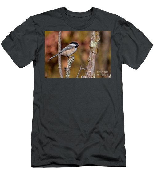 The Perch Men's T-Shirt (Athletic Fit)